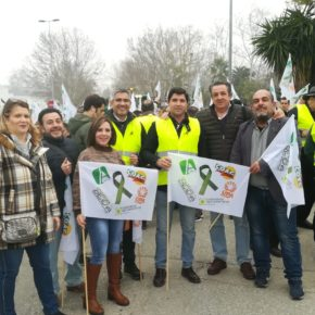 """Ciudadanos defiende una """"necesaria"""" reforma en la ley de valor de la cadena alimentaria en los precios de aceite de oliva"""