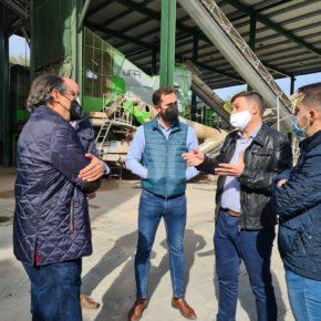 """Ruiz: """"Pedimos al ministro Planas que de la cara ante el sector del olivar y explique los pormenores del decreto de convergencia"""""""
