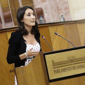 """Ciudadanos celebra que el Museo Ibero de Jaén haya empezado a recibir ya piezas de otras colecciones que """"aumentarán su proyección cultural, turística y científica"""""""